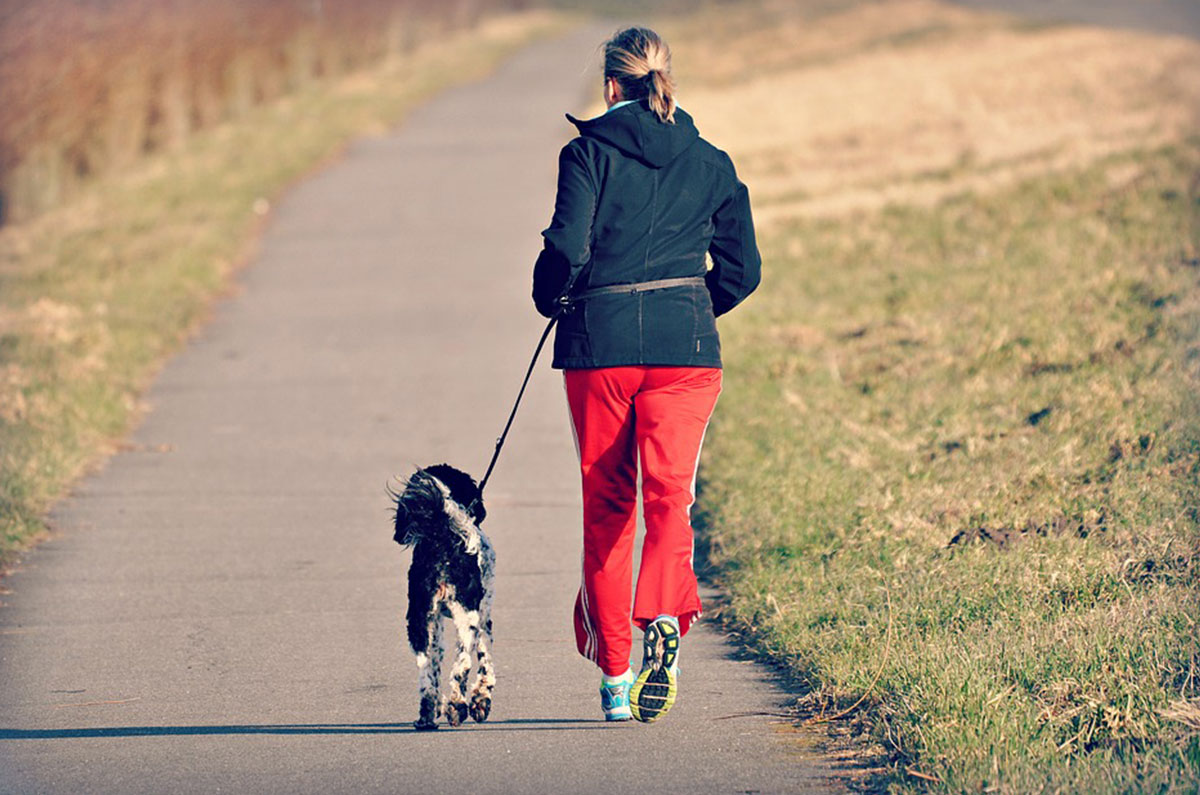 Pets-Help-To-Keep-You-Fit1200x795.jpg