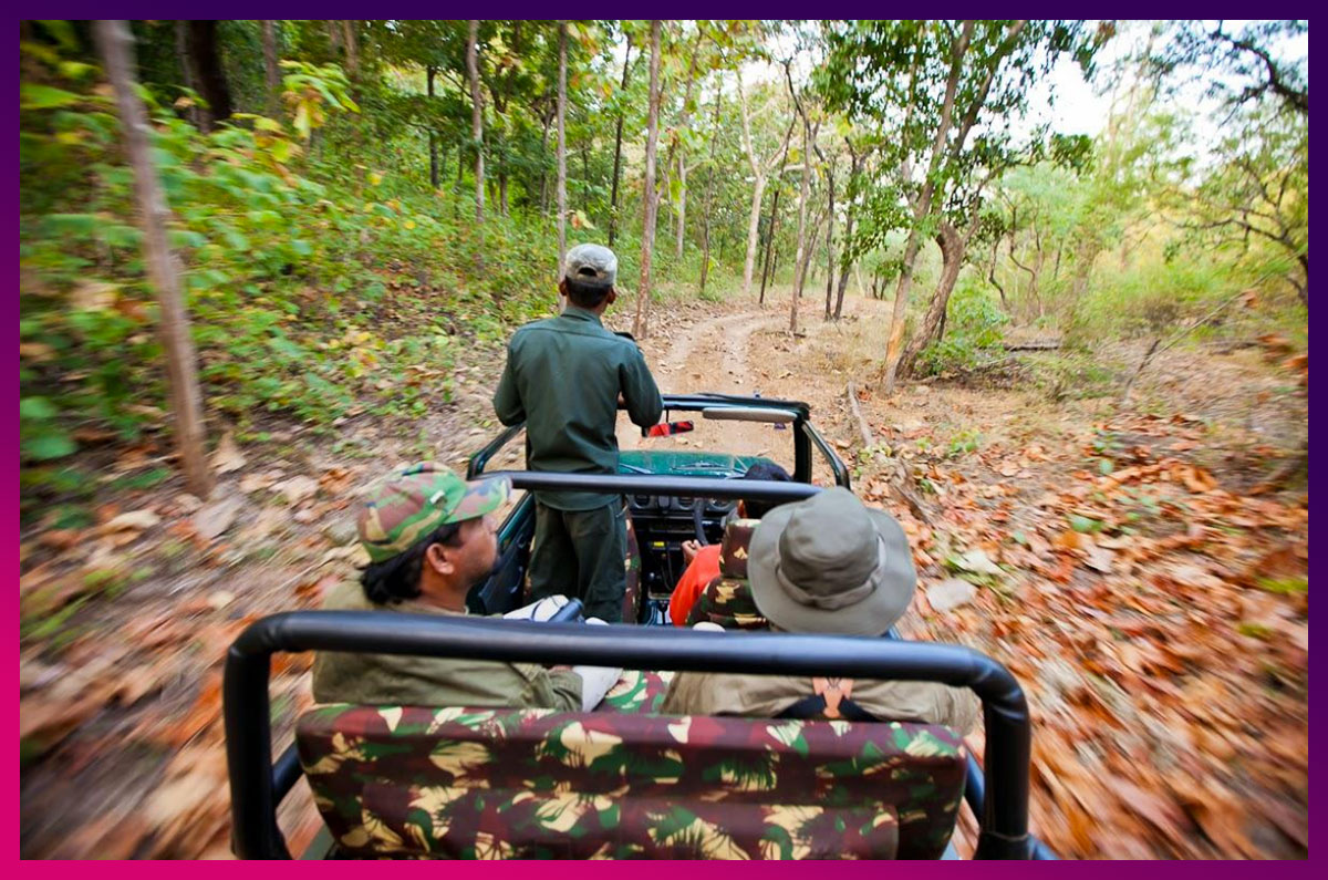 9.-Jeep-Safari-In-Satpura-National-Park-pinterest.jpg