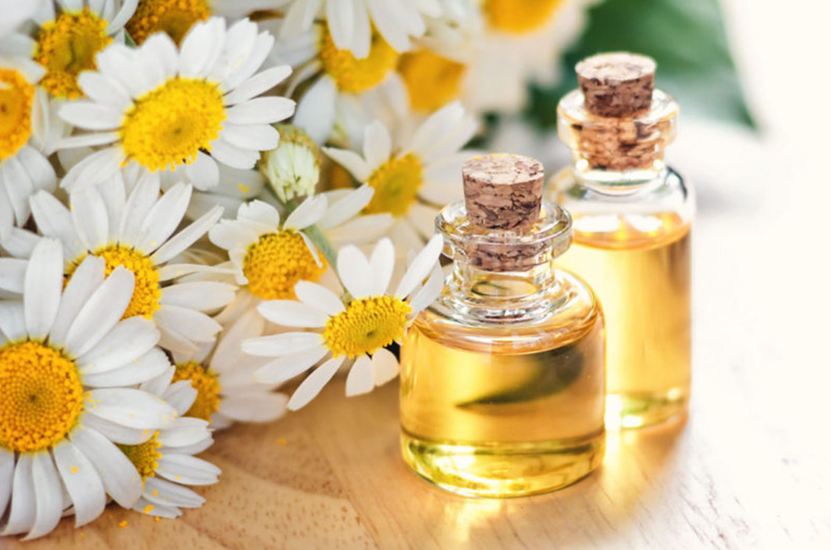 13)-Chamomile-Oil--pinterest.jpg