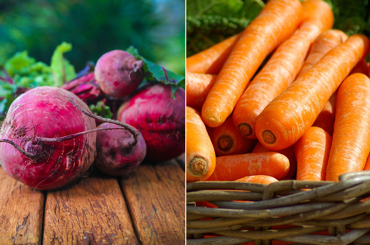 Carrots-and-Beets---pixabay.jpg